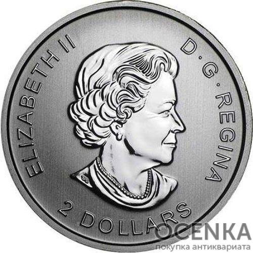 Серебряная монета 2 Доллара Канады - 5