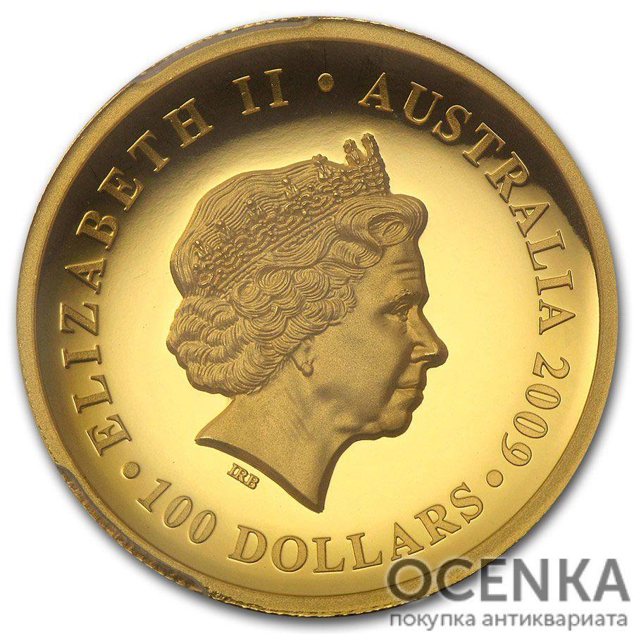 Золотая монета 100 долларов 2009 год. Австралия. Коала - 1