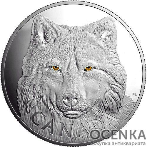 Серебряная монета 250 Долларов Канады - 7