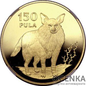 Золотая монета 150 Пул (150 Pula) Ботсвана