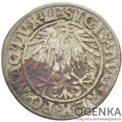 Серебряная монета Полугрош Средневековой Литвы - 1