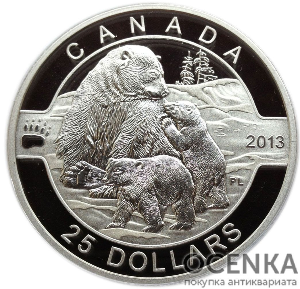 Серебряная монета 25 Долларов Канады - 5