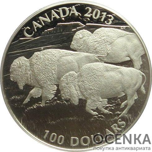 Серебряная монета 100 Долларов Канады - 3