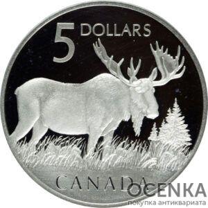 Серебряная монета 5 Долларов Канады
