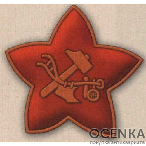 Красноармейский значок-кокарда образца 1918 г.