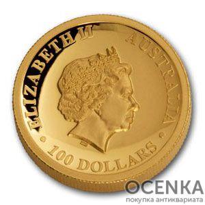 Золотая монета 100 долларов 2016 год. Австралия. Клиновидный орел - 1