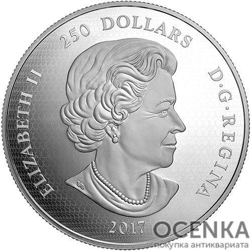 Серебряная монета 250 Долларов Канады - 6