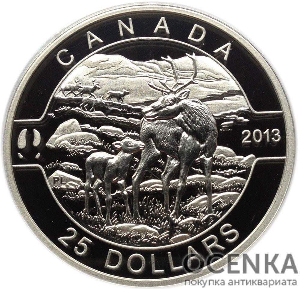 Серебряная монета 25 Долларов Канады - 7