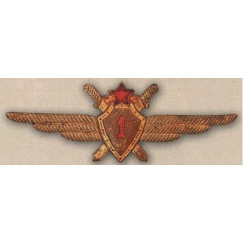Нагрудный знак «Военный летчик 1-го класса»