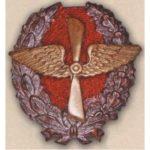 Нагрудный знак «Красного военного летчика». 1917 – 18 гг.
